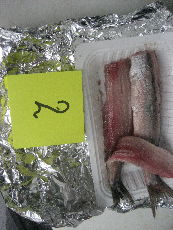 Fijnvishandel Santpoort aan Zee