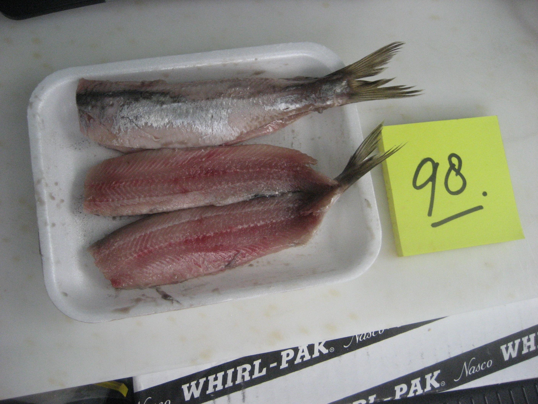Vishandel Ruud den Haan