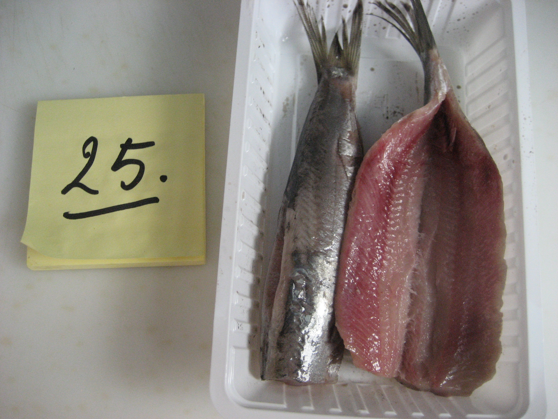 Vishandel Waninge