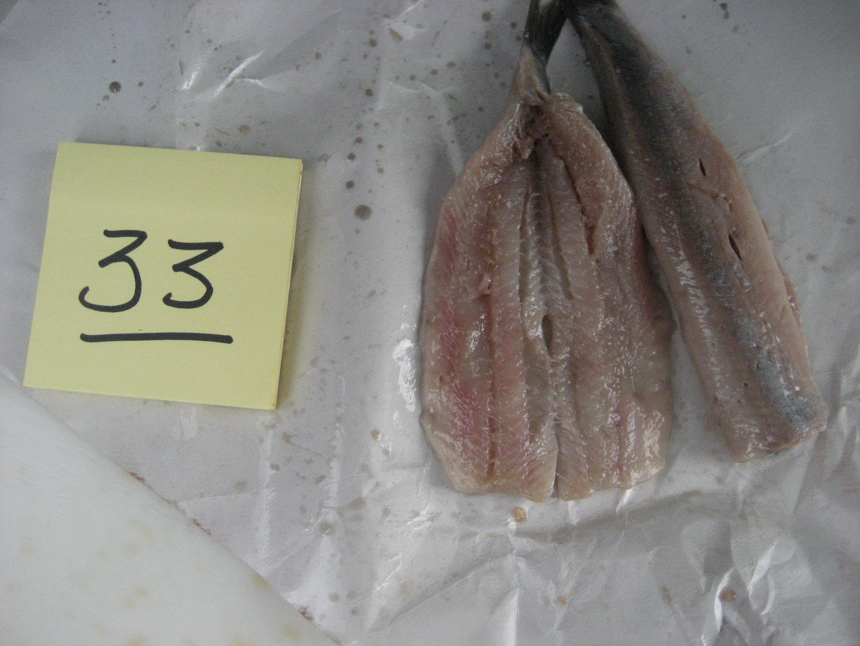 Vishandel Boels