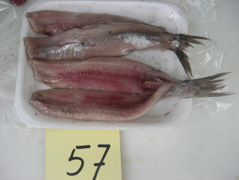 Volendammer Vishandel Snoek