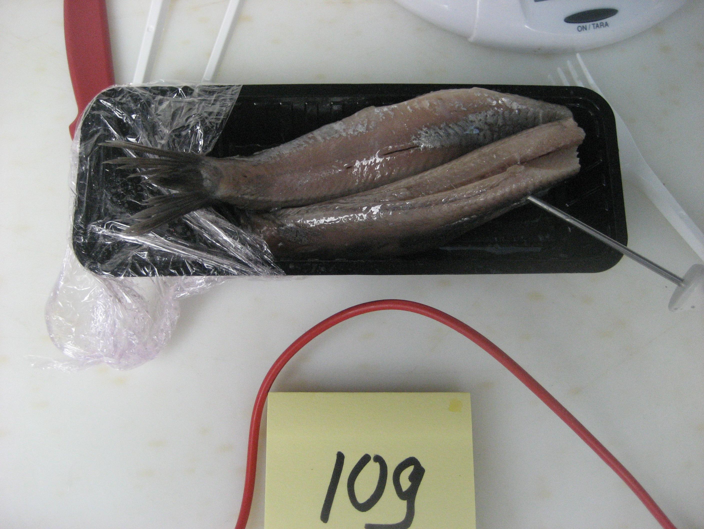 Rene's Visspeciaalzaak